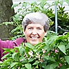 Tending My Garden/ Organic Gardening with a common sense approach