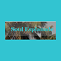 Soul Esplanade (Travel & spread Love)