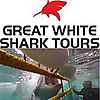 Shark Cage Diving Blog