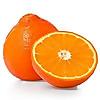 Florida Fruit Shippers