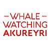 Elding Whale Watching Akureyri