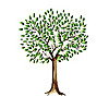 Austin Family Counseling   Child, Couples, Individual, Family Counseling/Therapy