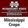 Mississippi State University extension | Mississippi Crop Situation Blog