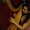 The Mainstream Harpist