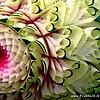 Scuruchi Vincenzo fruttart fruitcarving