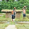 Primitive Kingdom Angkor