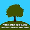 Tree Care Auckland Blog