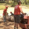 Todd's Marietta Tree Removal Blog