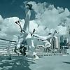 Capoeira with Boto