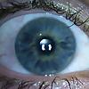 My Myopic Eyes