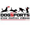 DogSports Cz