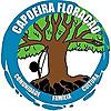 Minnesota Capoeira Academy