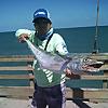 Matt's Saltwater Fishing