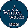 BBC Blogs | Springwatch