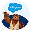 Salesforce Developers