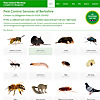 Pest Control Berkshire Blog