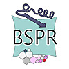 BSPR | We are experts in paediatric health