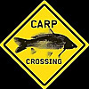 Carp Crossing Magazine | Dedicated To Carp