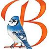 Backyard Birdlady