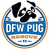 DFW Pugs Rescue Club | Pug Rescue Blog