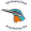 Teifi Ringing Group