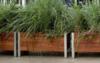 Gardening in the sky | Balcony Gardening Blog