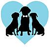 FairyTail Pet Care | Pet Sitting and Pet Coordination Blog