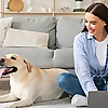 Petplan | The Pet Insurance People Blog