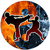 Martial Arts Review