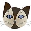 AZ Cat