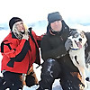 Safaris - The Lapland Connection » huskies