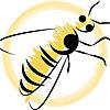 Sweet Honeybee Health CBD Blog