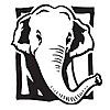 Zoo News   Wild Blog