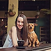 My Dog Ate My Blog