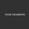 Tassie Snowbirds | Let's go on a Aussie camping adventure!