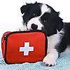Teesside First Aid