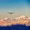 Simple Living Alaska