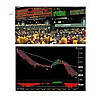 Mohan's Day Trader's Action | Precision Trading Services