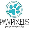 Paw Pixels Pet Photography Blog