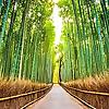 Boutique Japan | Japan Travel Blog
