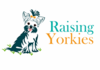 Raising Yorkies Blog