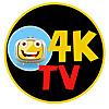 TE TELEVISION