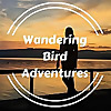 Wandering Bird | Road Trips, Motorhome Travel & Finding Freedom