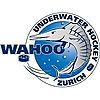 Underwater Hockey Club Zurich