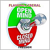 Flaming Liberal | Constructive Political Debate