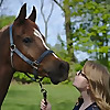 Adamson Equestrian