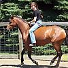 Rudy Horsemanship