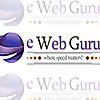 eWebGuru Blog