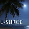 Hurricane Hal's Storm Surge Blog