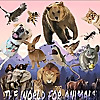 The World For Animals
